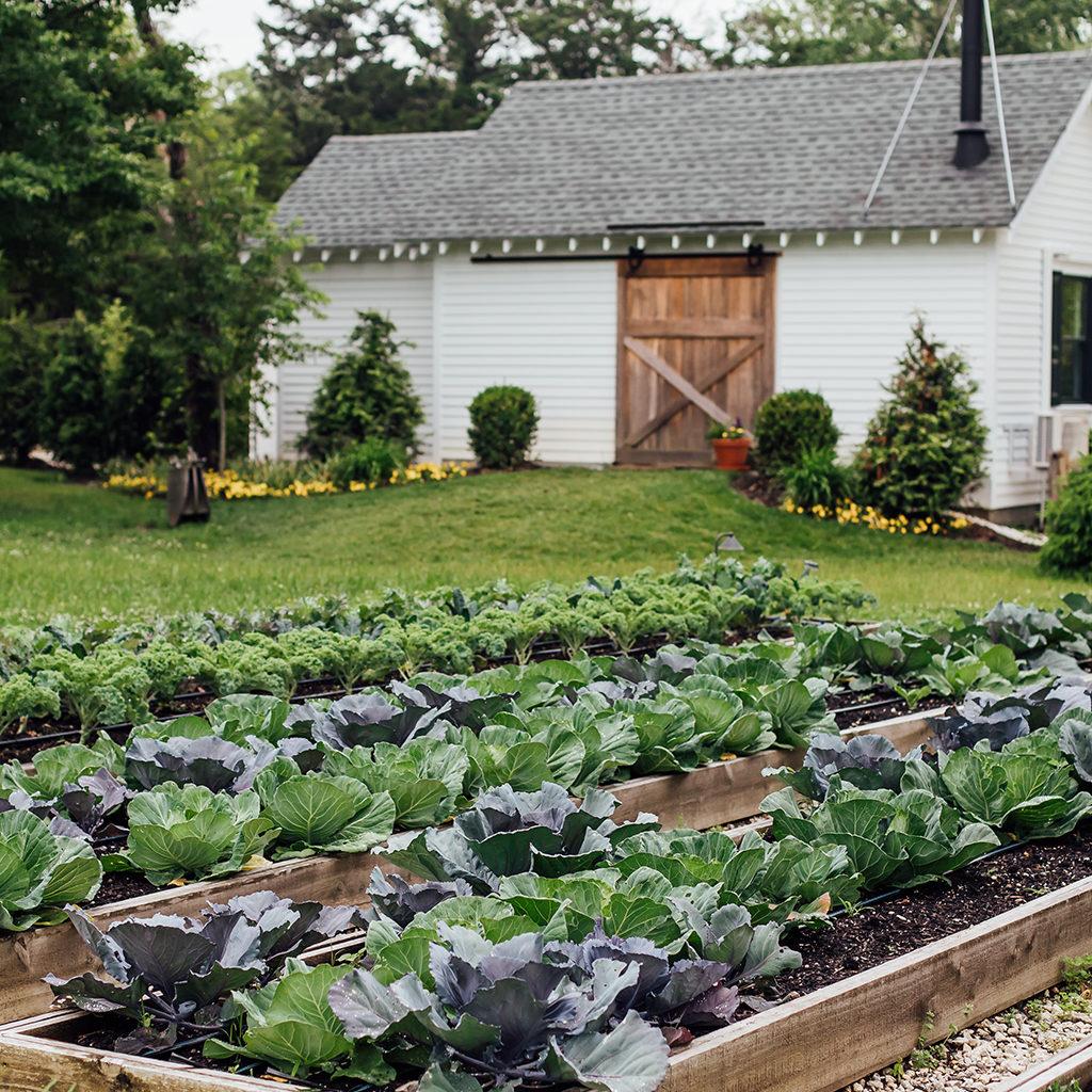 tool-shed-kitchen-garden-farm-website-1024x1024